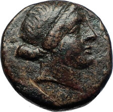 KYME in AEOLIS 250BC Amazon Horse Vase Authentic Rare Ancient Greek Coin i70030