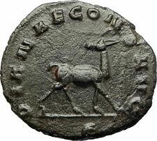 GALLIENUS Genuine 267AD Rome Authentic Ancient Roman Coin w ANTELOPE i77187