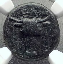 ELATEIA in PHOKIS Authentic Ancient 200BC Greek Coin BULL & ATHENA NGC i72651
