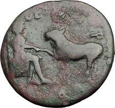 COMMODUS 177AD Parion Mysia ASCLEPIUS Veterinary Medicine God Roman Coin i64769