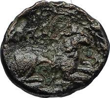 KASSANDER 316BC Pella Macedonia HERCULES LION Original Ancient Greek Coin i66700