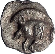 KYZIKOS Cyzicus MYSIA Genuine Ancient 525BC Silver Greek Coin BOAR LION i73522