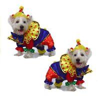 Shiny Clown Dog Costume - Great for Halloween ! | eBay