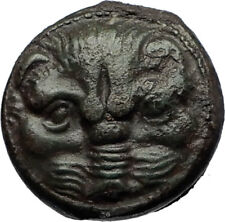 RHEGION in BRUTTIUM Authentic Ancient 425BC RARE Greek Coin LION OLIVES i69275