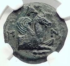 PANTIKAPAION in Bosporus 310BC Ancient Greek Coin w SATYR & PEGASUS   NGC i73132