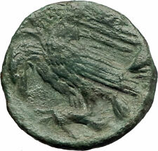 AKRAGAS Sicily 279BC Apollo Eagle Hare Genuine  Ancient Greek  Coin i76749