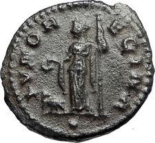 CLAUDIUS II Gothicus Authentic Ancient 268AD Roman Coin JUNO w PEACOCK i67107