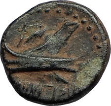 ARADOS in PHOENICIA Authentic Ancient 206BC Greek Coin w ZEUS & GALLEY i67667