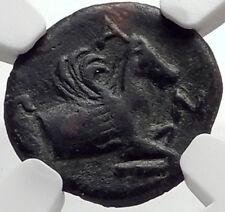 PANTIKAPAION in Bosporus 310BC Ancient Greek Coin w SATYR & PEGASUS   NGC i68922