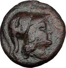 Antigonos II Gonatas Macedonian King Ancient Greek coin Athena PAN Cult  i37459