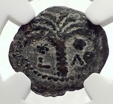 MARCUS AMBIBULUS Augustus Jerusalem Ancient 8AD BIBLICAL Roman Coin NGC i70876
