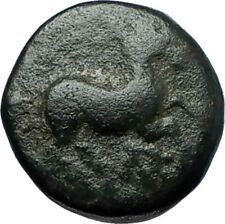 MARONEIA Thrace 400BC Authentic Ancient Greek Coin w HORSE & WINE GRAPES i67873