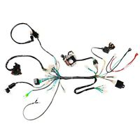 CDI Wire Harness Stator Assembly Wiring Harness For