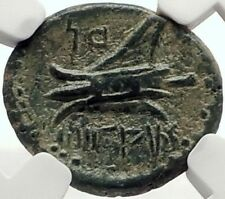 ARADOS in PHOENICIA Authentic Ancient 206BC Greek Coin ZEUS & GALLEY NGC i68951