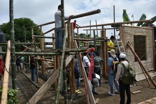 Aprueban norma para construcción en Caña Guadúa