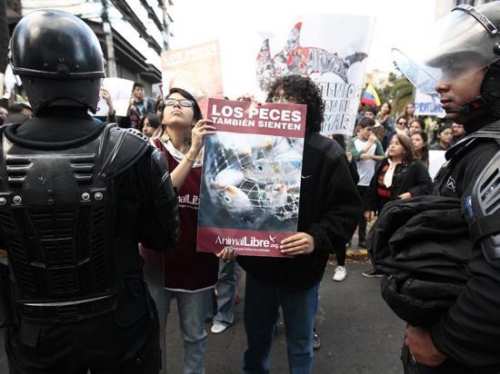 Ecuatorianos protestan ante embajada china por pesca en Galápagos