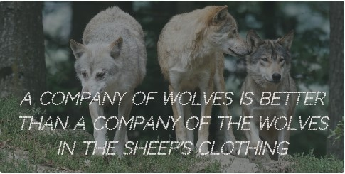 20 A Wolf In Sheep S Clothing Quotes Enkiquotes