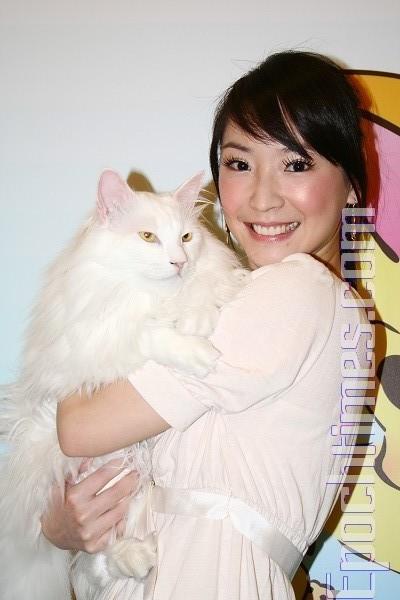 王俐人關懷流浪貓 代言攝影展做公益 | 大紀元