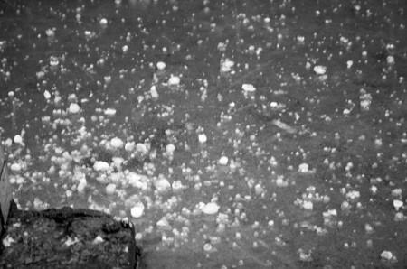 浙江遭5月冰雹襲擊 近百汽車「破相」 | 大紀元