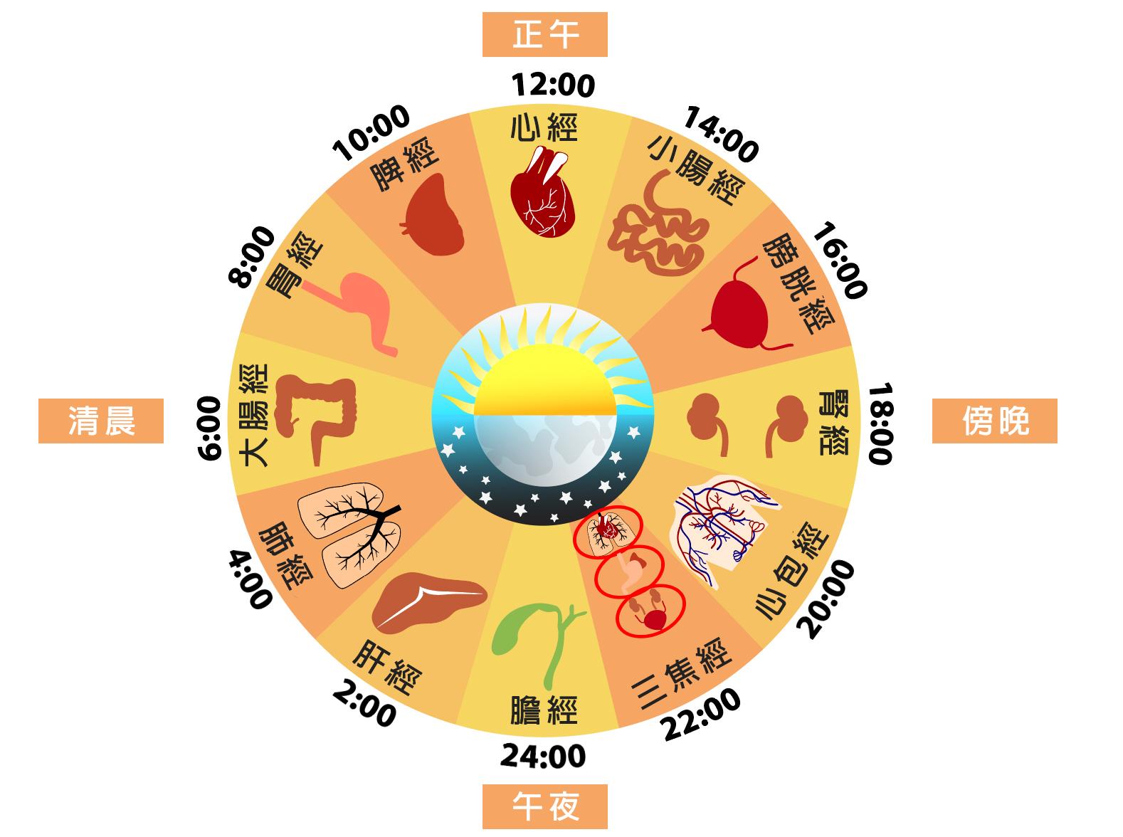 為何下午3點要喝水?中醫十二時辰養生法@小資女聰明消費網 vs 寶貝成長營~字卡王國 PChome 個人新聞臺