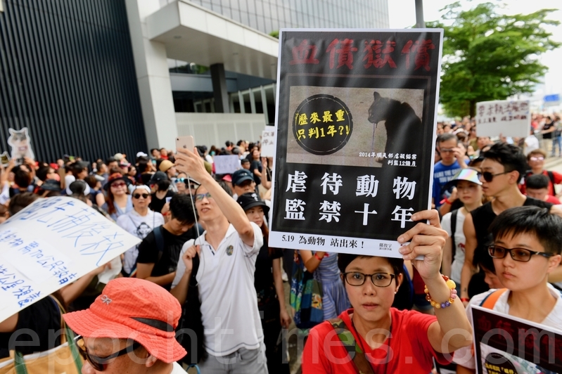 香港六千人遊行爭動物福利法 | 防止殘酷對待動物條例 | 動物權益 | 漁護署 | 大紀元