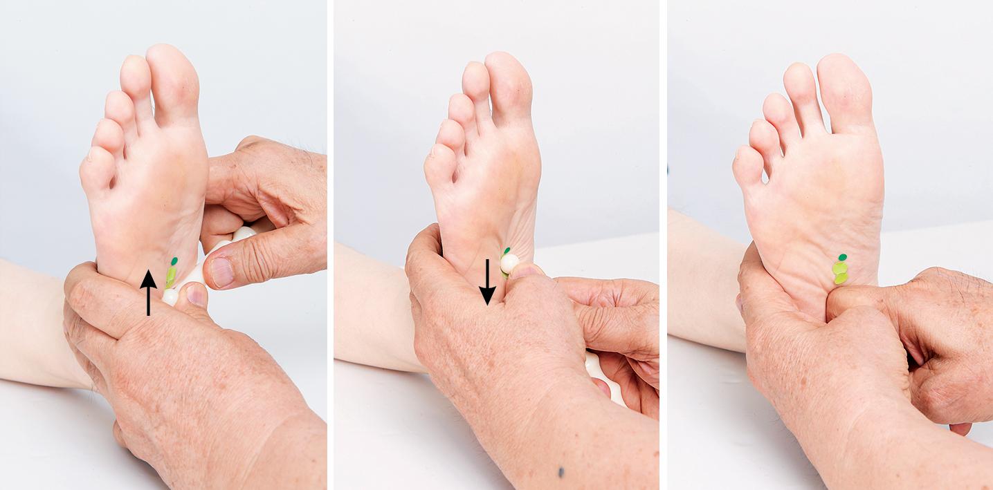 「腳底按摩之父」教你按腳底8部位 減肥消水腫 | 肥胖 | 代謝 | 腳底反射區 | 大紀元