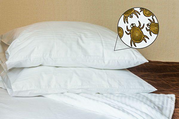 床單多久洗一次才衛生?清潔寢具的方法   洗床單   蟎蟲   皮膚   大紀元