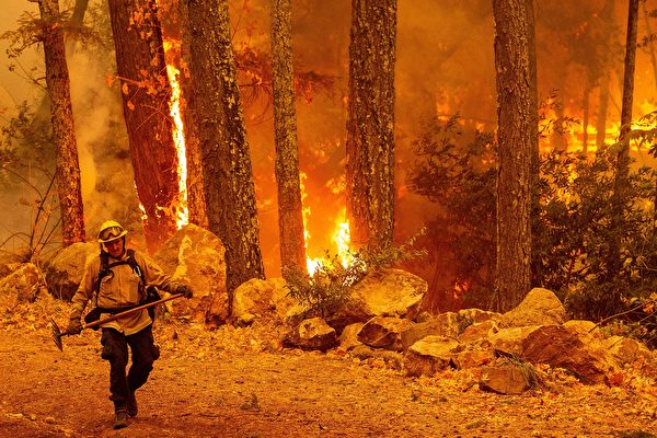 灣區高溫火險高 川普批準加州火災援助款   聯邦政府   野火   救濟申請   大紀元