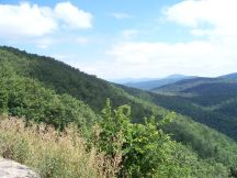 Ivy Creek Overlook