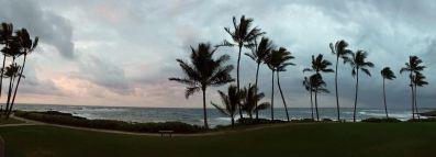 Beachfront panorama
