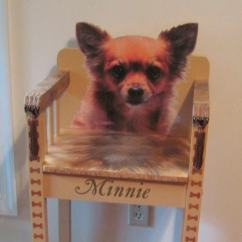 Dog High Chair Cover And Sash Hire Adelaide Custom Made To Order With Your On Back Etsy Image 0