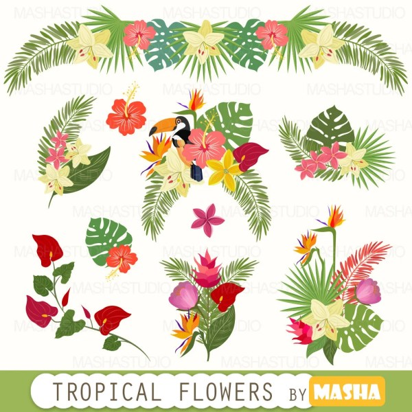 tropical clipart flowers