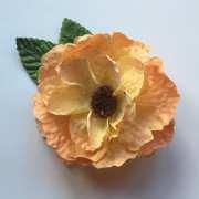 vintage peach single wild rose