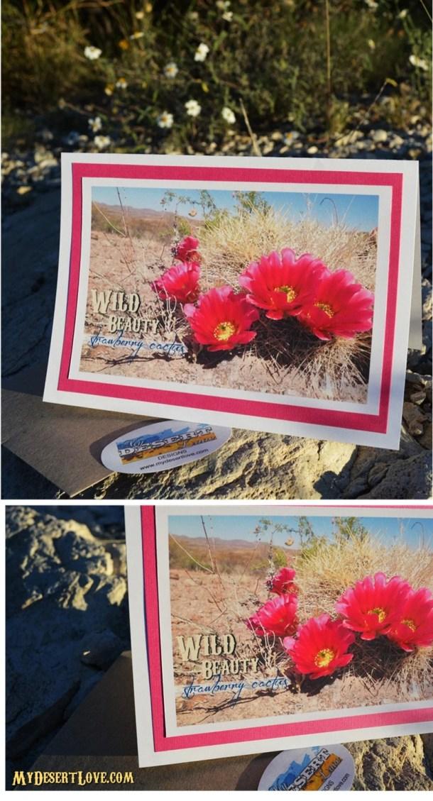 Pink Strawberry Cactus Ph...