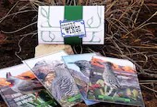 Postcard Gift Set, Birds,...