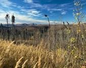 View From US Creek Road - Lustre or Metal Print