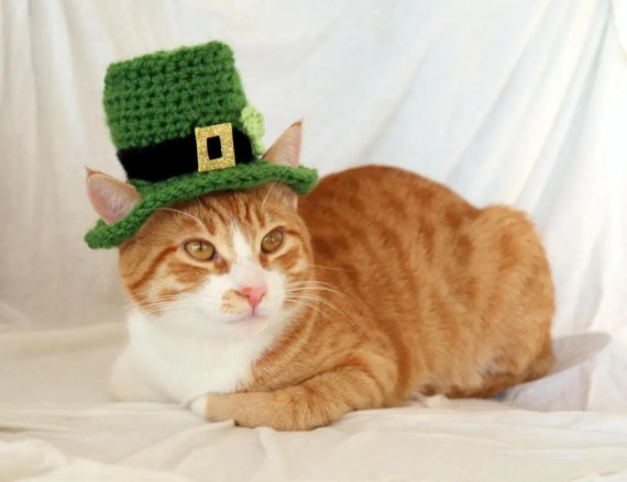St. Patrick's Day Crochet Top Hat for Cats