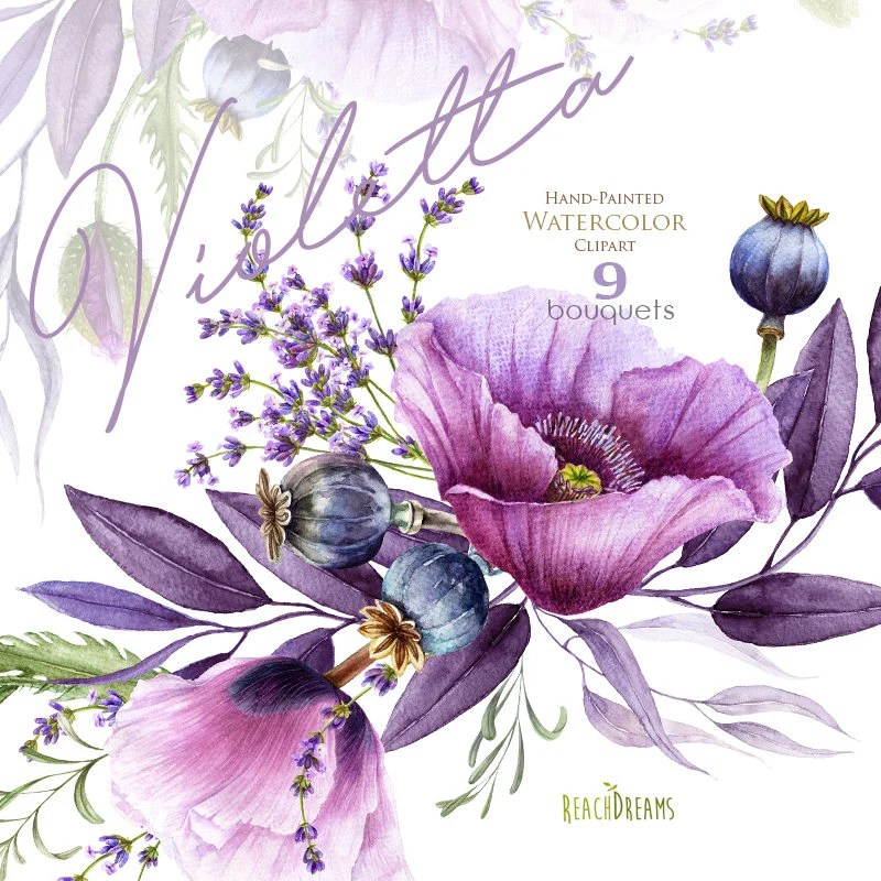 watercolor violet poppy lavender