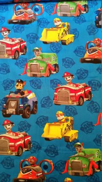 Paw Patrol Lined Placemat Bowl Mitt Hot Pad Matching Lined