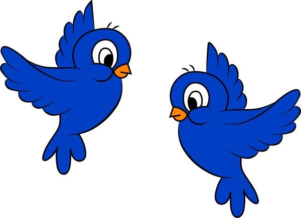 custom birds cartoon blue