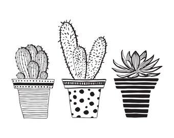 cactus illustration etsy