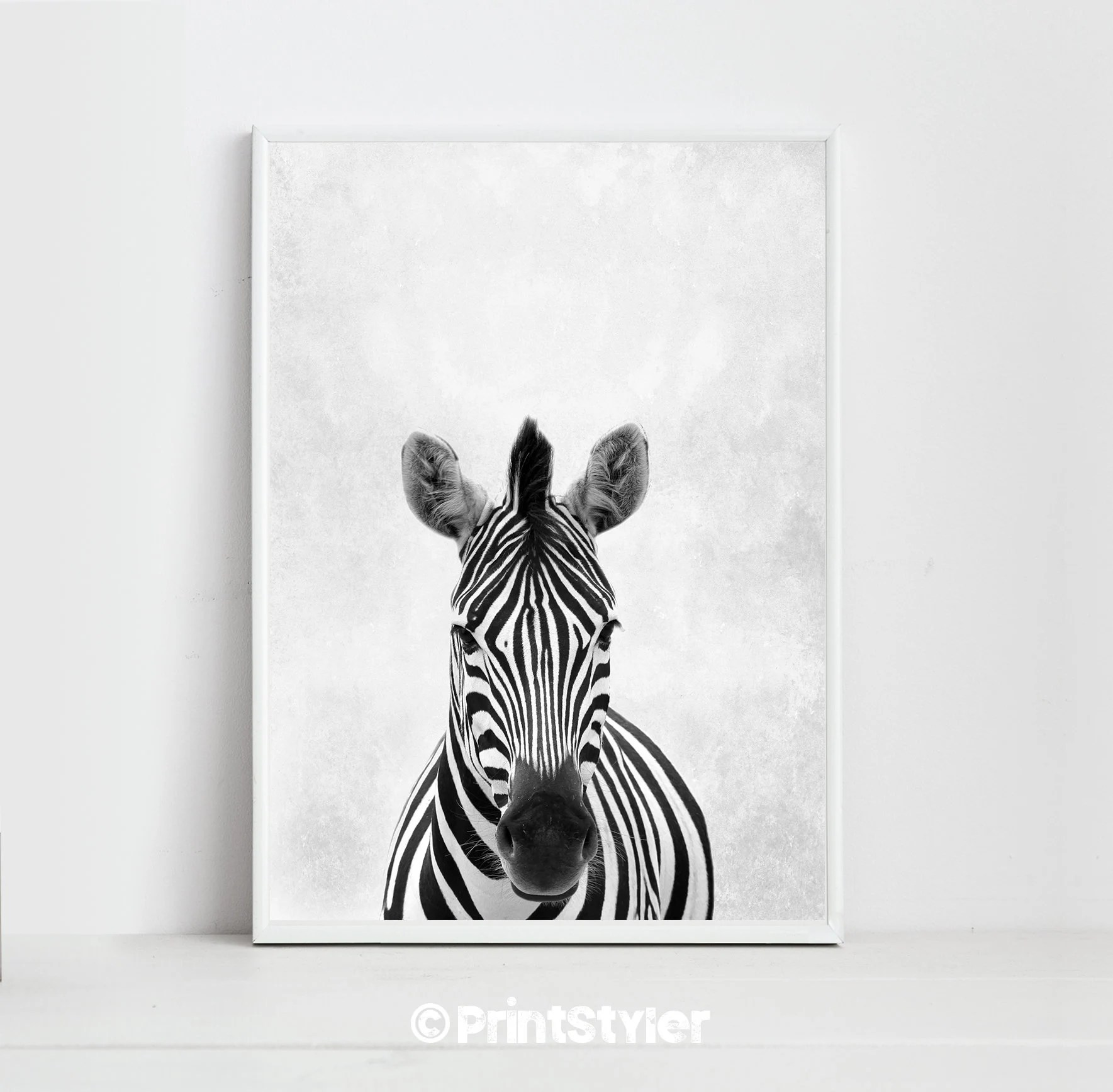 Zebra Print Zebra Art Zebra Poster Animal Prints