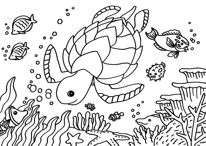 Sea Turtle Colouring Page A4 sea tortoise colouring page