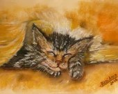 Personalized Portraits of Pets, Sleepy Kitten, Pastel on Paper Color