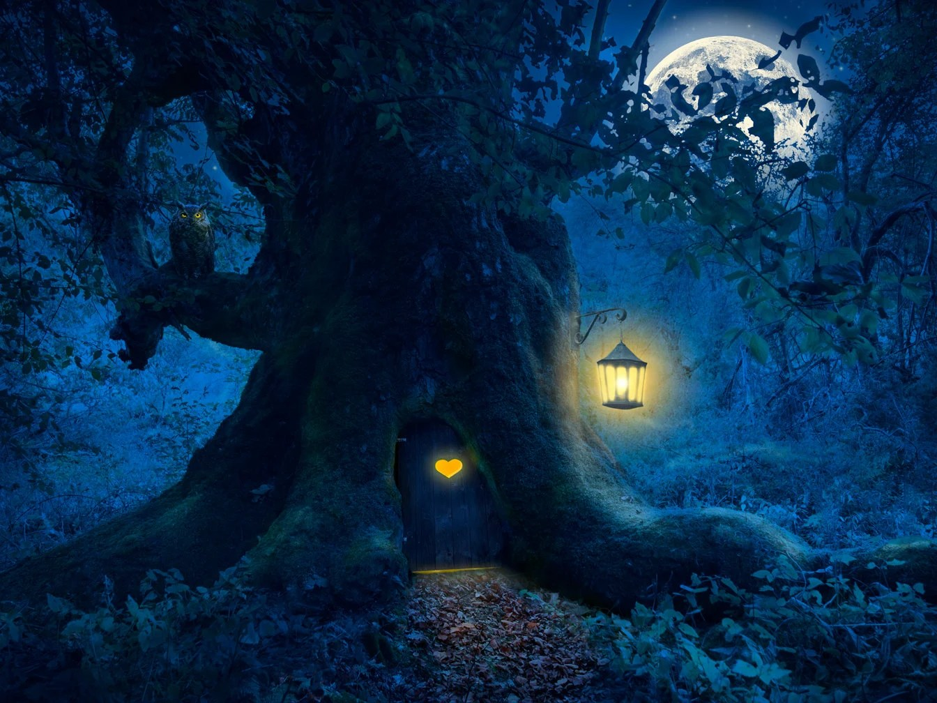 halloween backdrop night forest