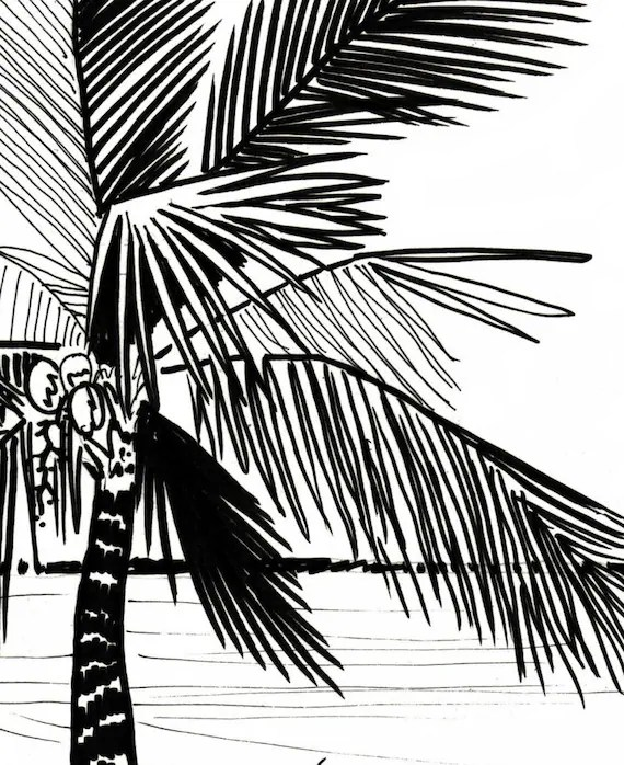 Palm Tree Coloring Page Embroidery Pattern Digital Etsy