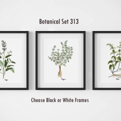 Framed Prints For Kitchens Cool Kitchen Tables Botanical Set Of 3 Wall Art Farmhouse Decor Picture By Designs