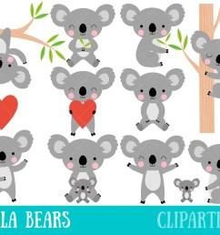 50 koala clipart  [ 3000 x 2400 Pixel ]