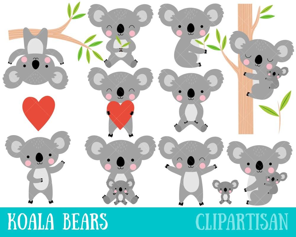 medium resolution of 50 koala clipart