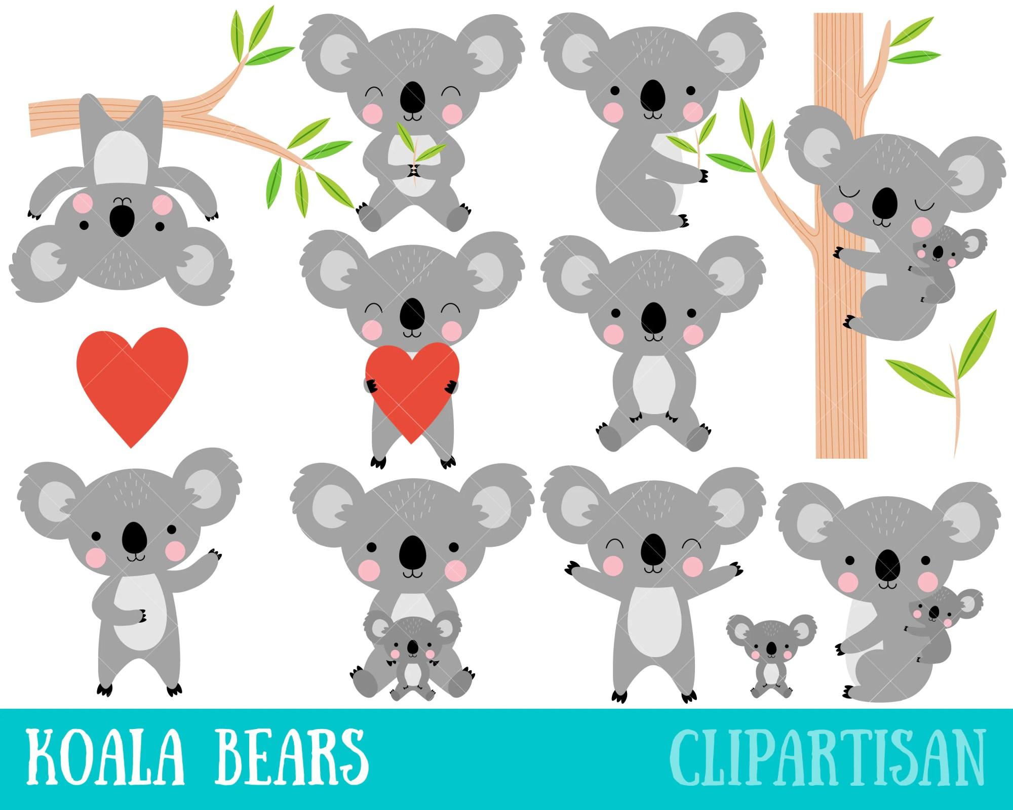 hight resolution of 50 koala clipart